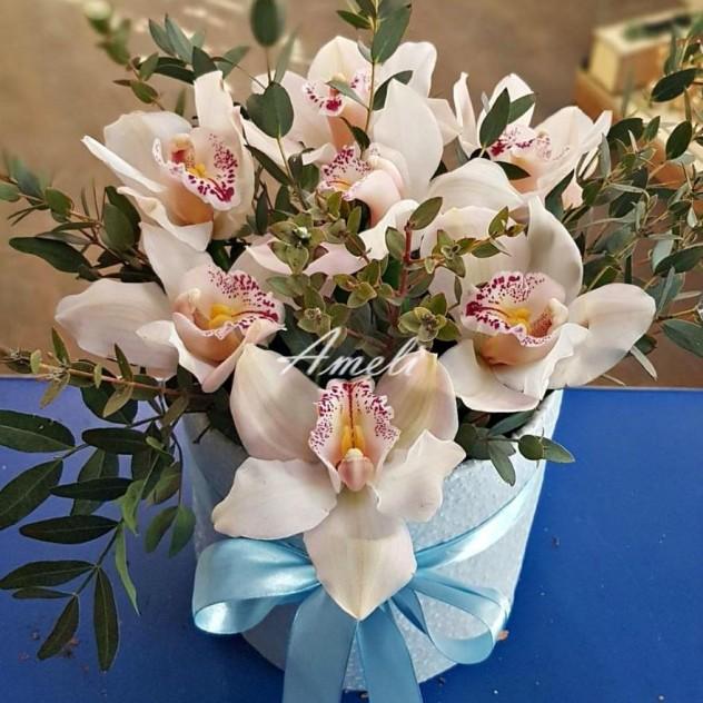 Коробочка с орхидеей цимбидиум