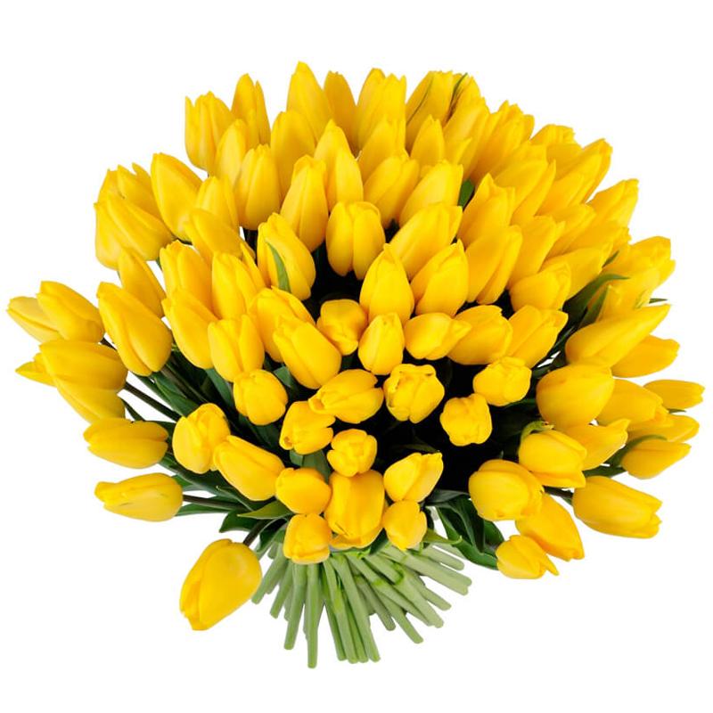 Букет из 51 желтого тюльпана